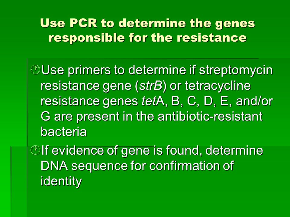Use PCR to determine the genes responsible for the resistance  Use primers to determine if streptomycin resistance gene (strB) or tetracycline resistance genes tetA, B, C, D, E, and/or G are present in the antibiotic-resistant bacteria  If evidence of gene is found, determine DNA sequence for confirmation of identity