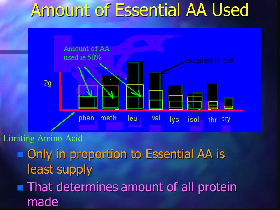 Amount of Essential AA Used n Only in proportion to Essential AA is least supply n That determines amount of all protein made Limiting Amino Acid