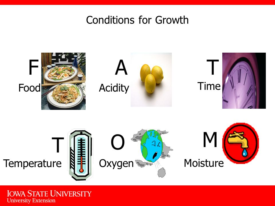 Conditions for Growth What Microorganisms need to grow F Food A Acidity T Time T Temperature O Oxygen M Moisture