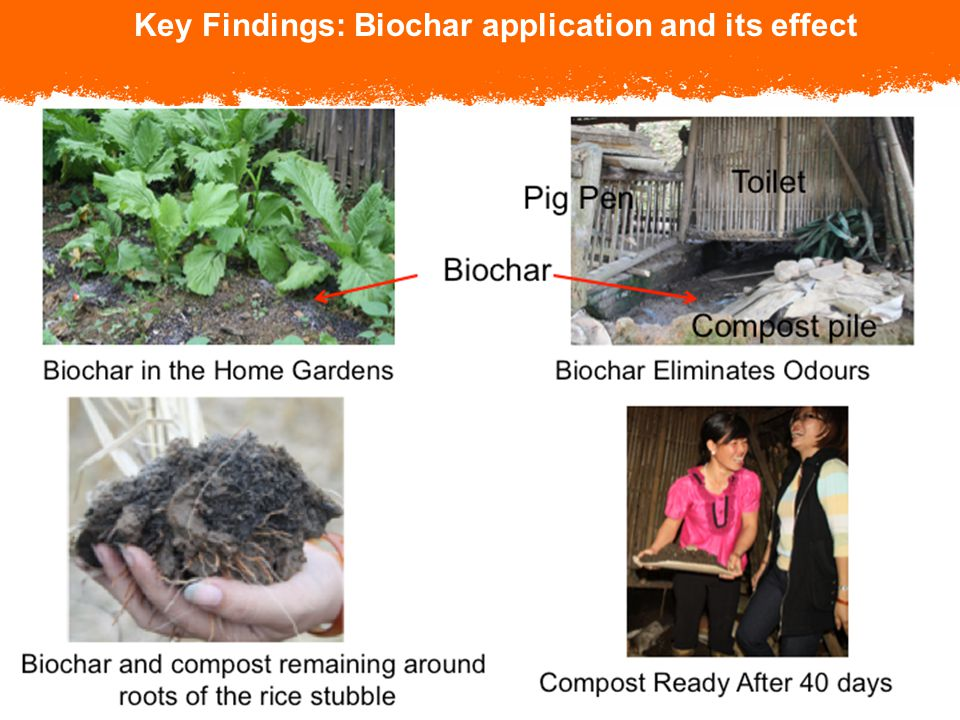 © 2005, CARE USA. All rights reserved. Key Findings: Biochar application and its effect