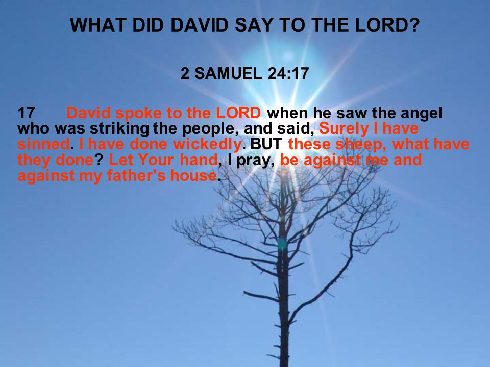 WHAT DID DAVID SAY TO THE LORD? 2 SAMUEL 24:17 17David spoke to the LORD when he saw the angel who was striking the people, and said, Surely I have si