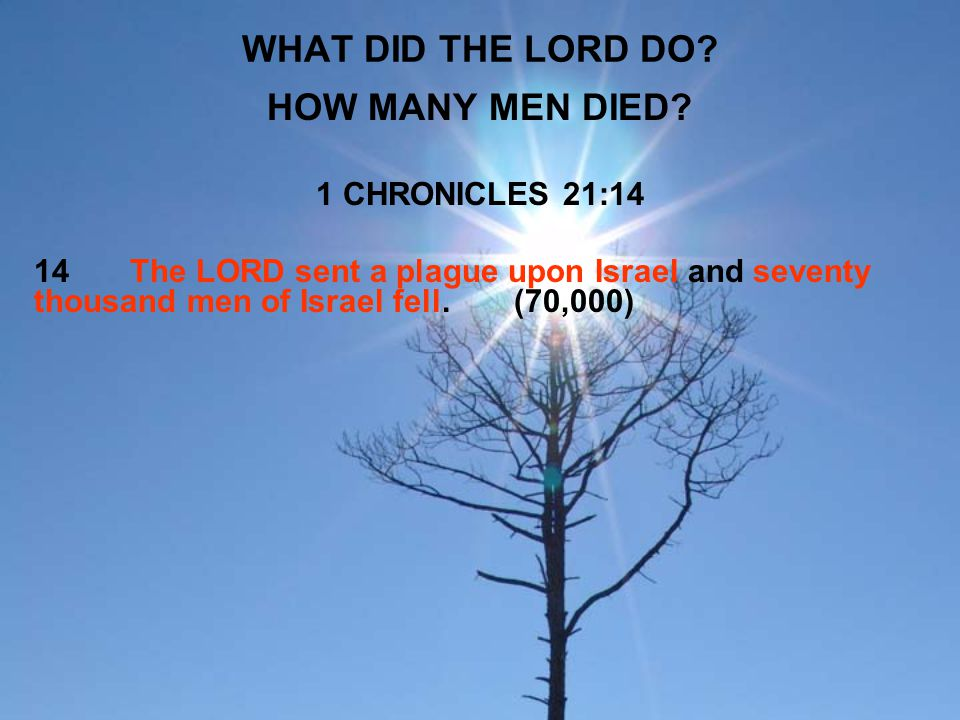 WHAT DID THE LORD DO? HOW MANY MEN DIED? 1 CHRONICLES 21:14 14The LORD sent a plague upon Israel and seventy thousand men of Israel fell.(70,000)