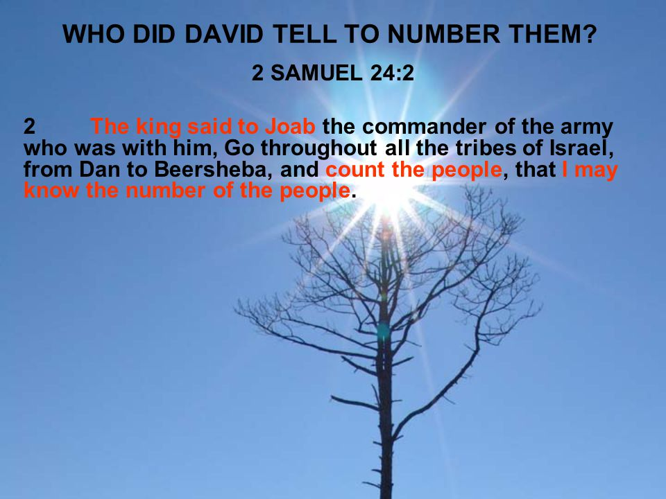 WHO DID DAVID TELL TO NUMBER THEM? 2 SAMUEL 24:2 2The king said to Joab the commander of the army who was with him, Go throughout all the tribes of Is