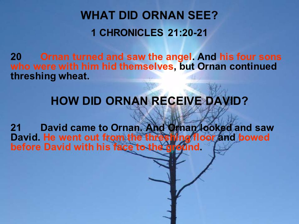 WHAT DID ORNAN SEE? 1 CHRONICLES 21:20-21 20Ornan turned and saw the angel. And his four sons who were with him hid themselves, but Ornan continued th