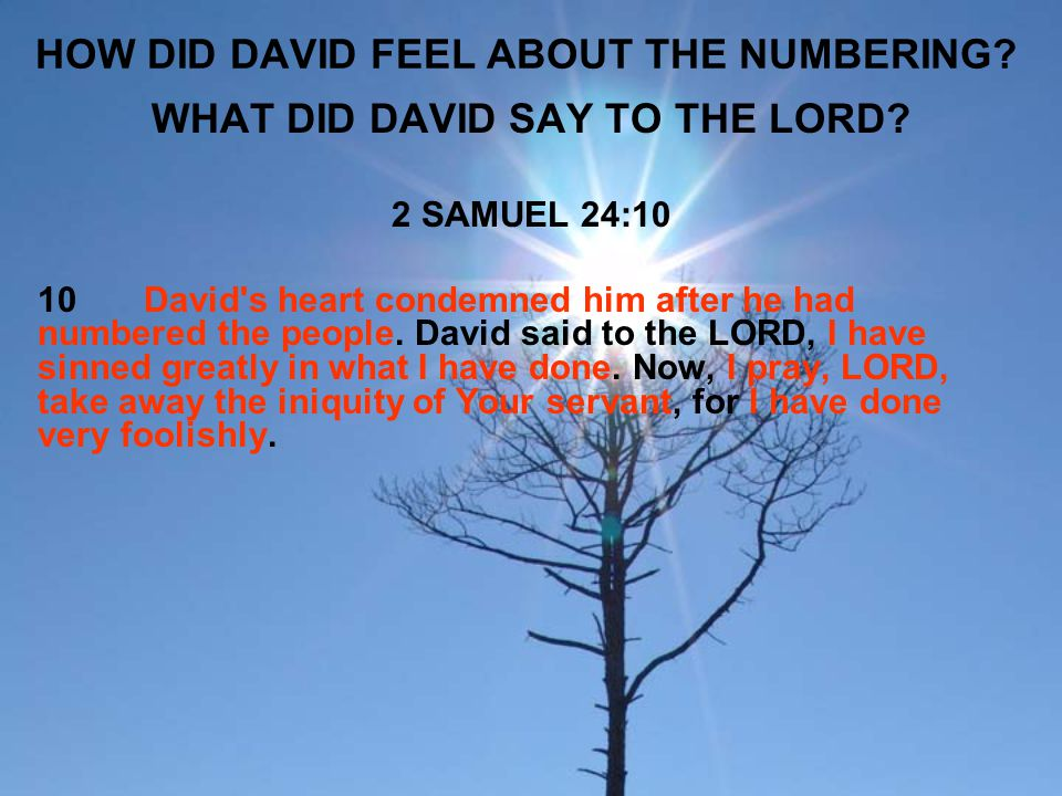 WHAT CHOICES DID THE LORD GIVE DAVID.