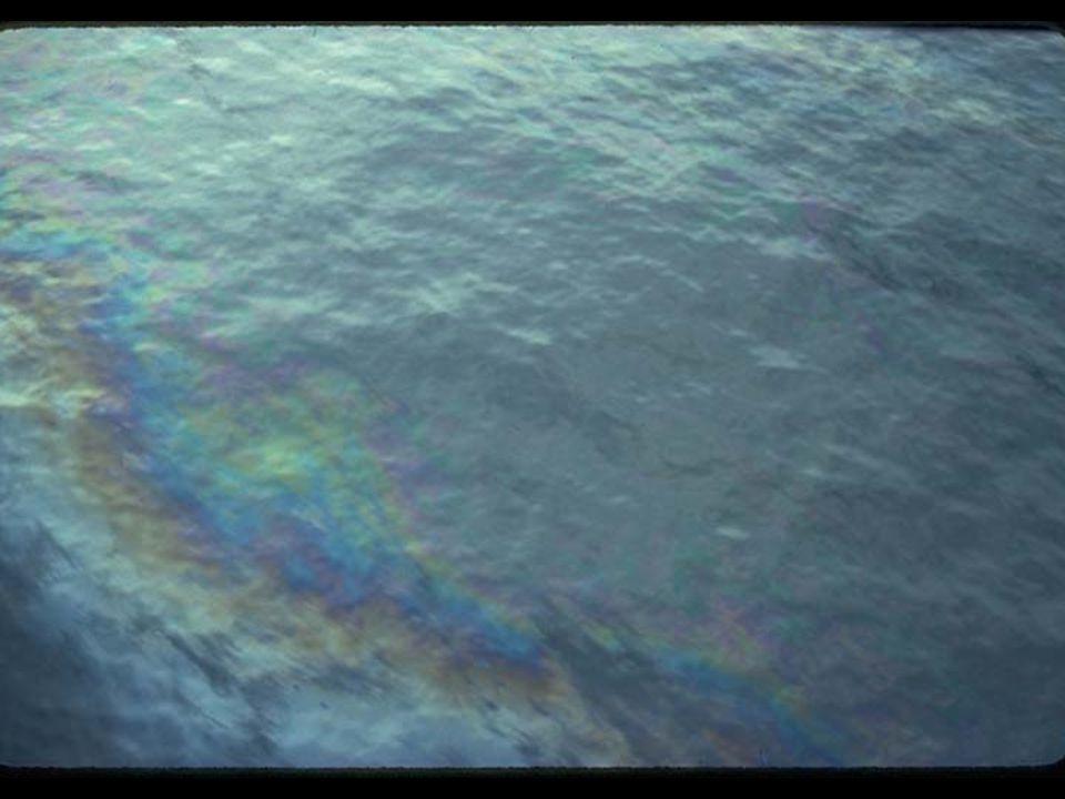 18. Oil sheen on water
