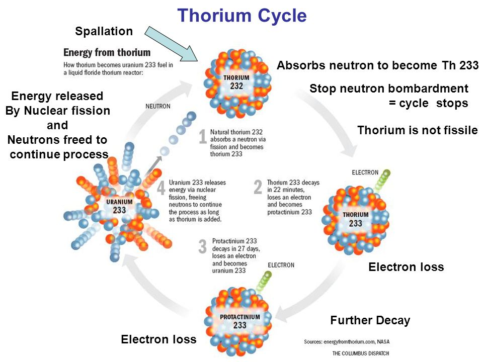 Thorium Cycle Spallation Stop neutron bombardment = cycle stops Absorbs neutron to become Th 233 Electron loss Energy released By Nuclear fission and Neutrons freed to continue process Further Decay Thorium is not fissile