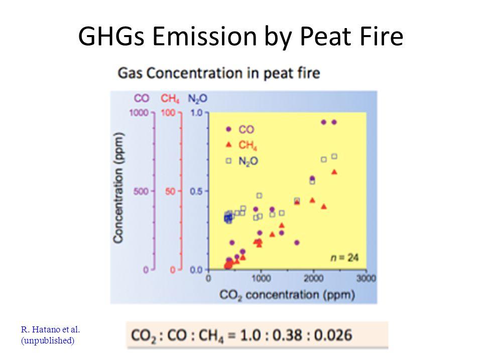 GHGs Emission by Peat Fire R. Hatano et al. (unpublished)