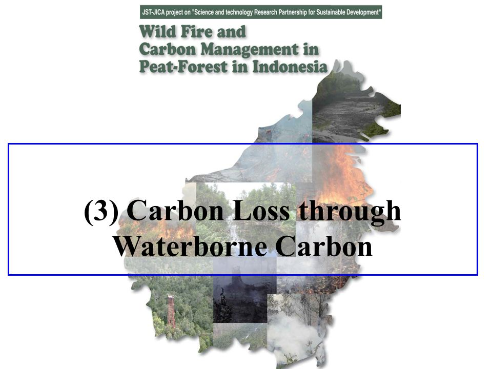 (3) Carbon Loss through Waterborne Carbon