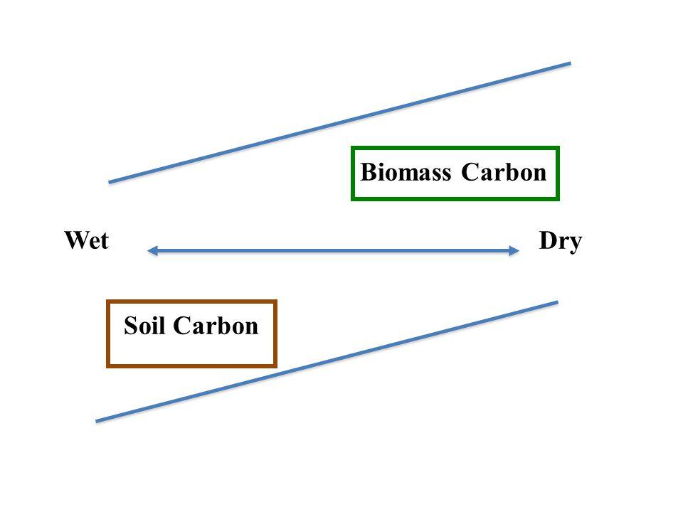 Biomass Carbon Soil Carbon WetDry