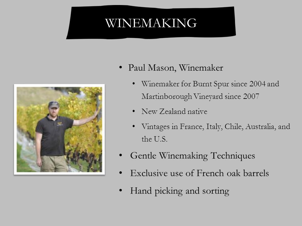 Paul Mason, Winemaker Winemaker for Burnt Spur since 2004 and Martinborough Vineyard since 2007 New Zealand native Vintages in France, Italy, Chile, Australia, and the U.S.