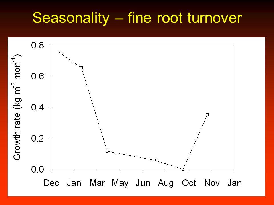 Seasonality – fine root turnover