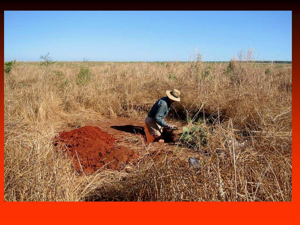 Impacts of land use change