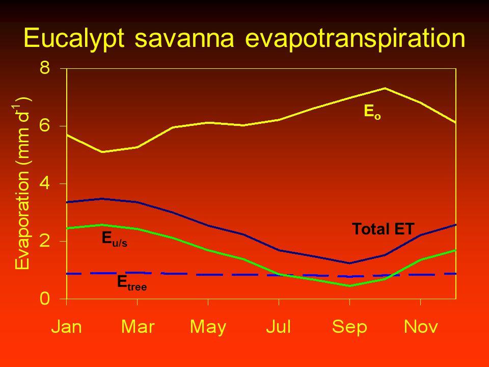 Eucalypt savanna evapotranspiration EoEo E tree E u/s Total ET