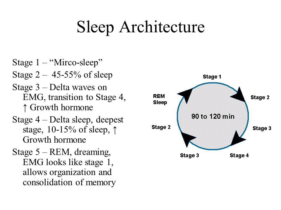 Sleep Architecture Stage 1 – Mirco-sleep Stage 2 – 45-55% of sleep Stage 3 – Delta waves on EMG, transition to Stage 4, ↑ Growth hormone Stage 4 – Delta sleep, deepest stage, 10-15% of sleep, ↑ Growth hormone Stage 5 – REM, dreaming, EMG looks like stage 1, allows organization and consolidation of memory