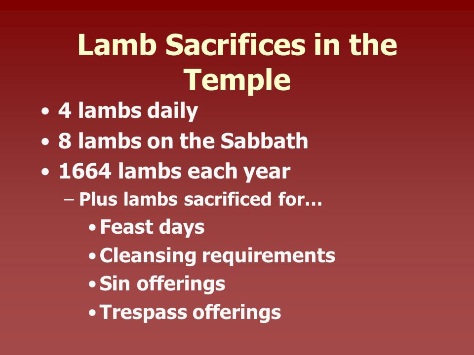 Lamb Sacrifices in the Temple 4 lambs daily 8 lambs on the Sabbath 1664 lambs each year –Plus lambs sacrificed for… Feast days Cleansing requirements Sin offerings Trespass offerings