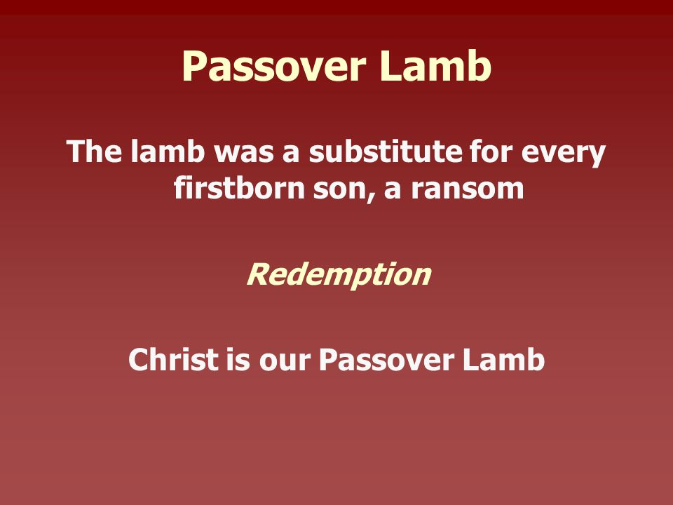 Passover Lamb The lamb was a substitute for every firstborn son, a ransom Redemption Christ is our Passover Lamb