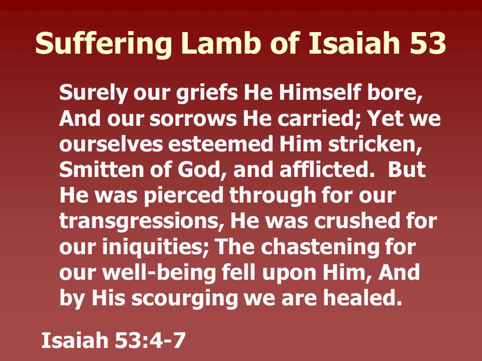 Suffering Lamb of Isaiah 53 Surely our griefs He Himself bore, And our sorrows He carried; Yet we ourselves esteemed Him stricken, Smitten of God, and afflicted.