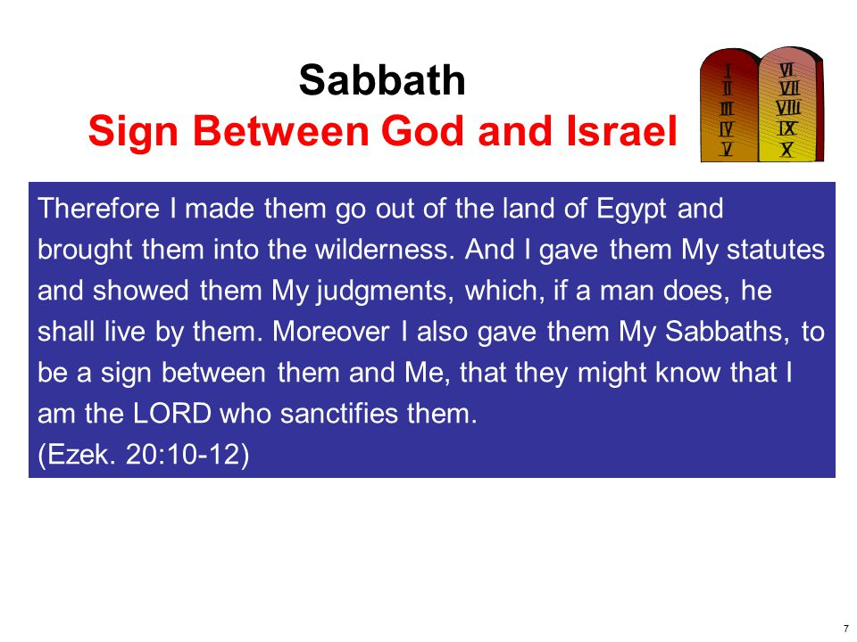 8 Sabbath Regulations DAY OF REST: You shall keep the Sabbath, therefore, for it is holy to you.