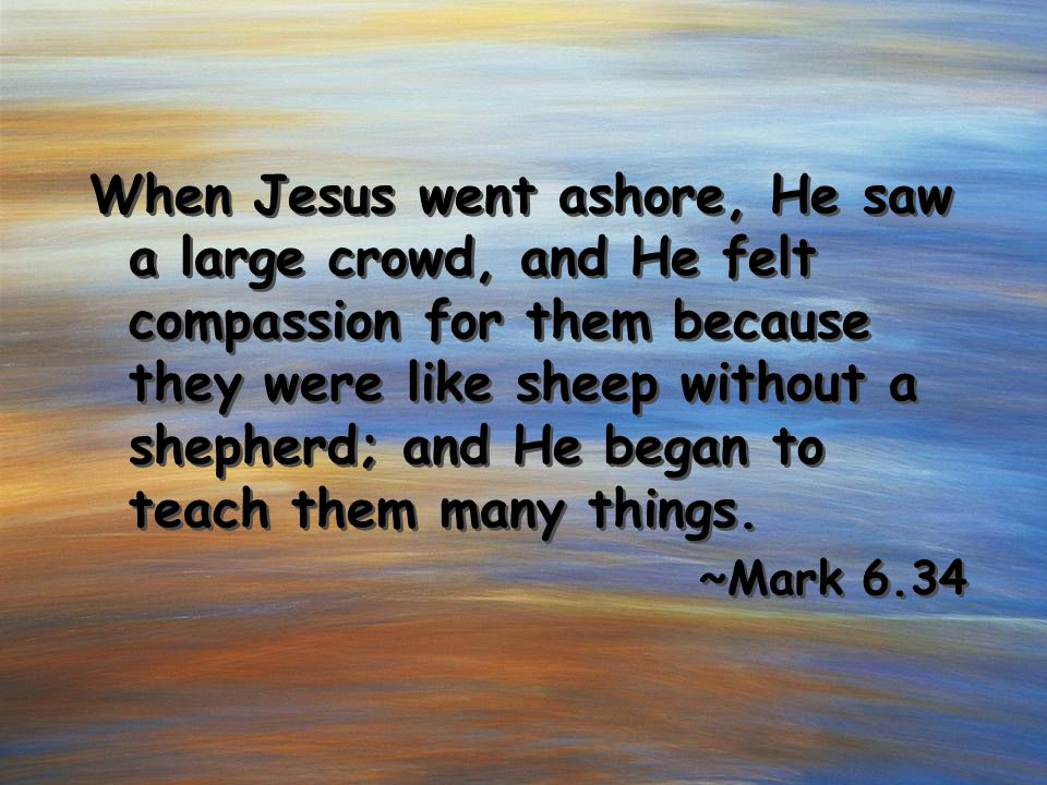 When Jesus went ashore, He saw a large crowd, and He felt compassion for them because they were like sheep without a shepherd; and He began to teach t