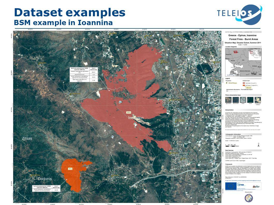 Dataset examples BSM example in Ioannina