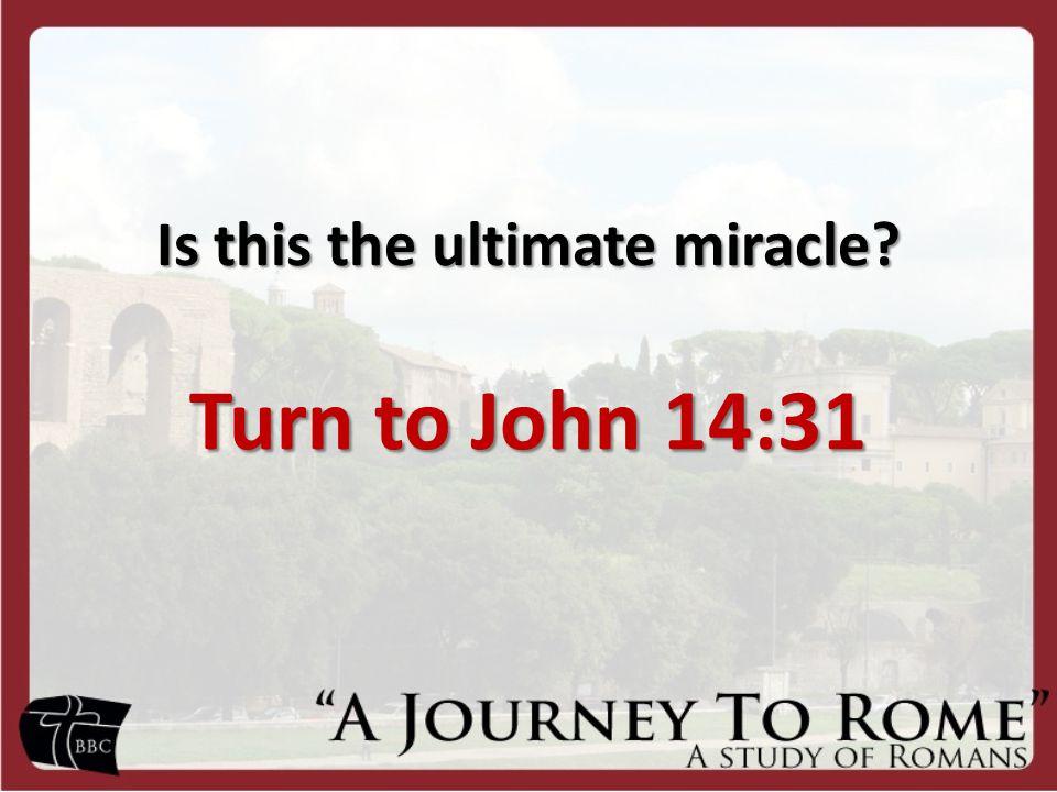 Turn to John 14:31