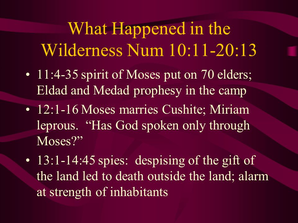 What Happened in the Wilderness Num 10:11-20:13 11:4-35 spirit of Moses put on 70 elders; Eldad and Medad prophesy in the camp 12:1-16 Moses marries Cushite; Miriam leprous.