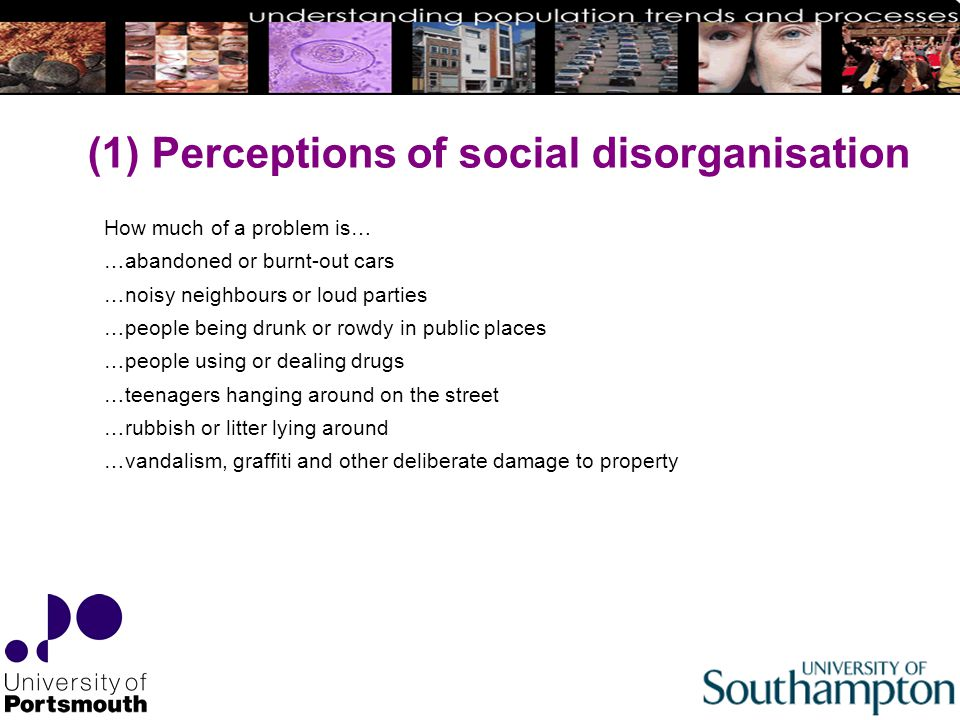 (1) Perceptions of social disorganisation How much of a problem is… …abandoned or burnt-out cars …noisy neighbours or loud parties …people being drunk or rowdy in public places …people using or dealing drugs …teenagers hanging around on the street …rubbish or litter lying around …vandalism, graffiti and other deliberate damage to property
