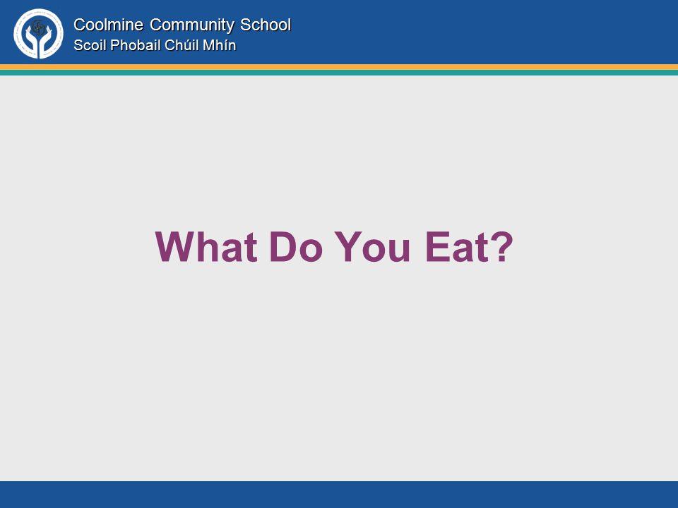Coolmine Community School Scoil Phobail Chúil Mhín What Do You Eat?