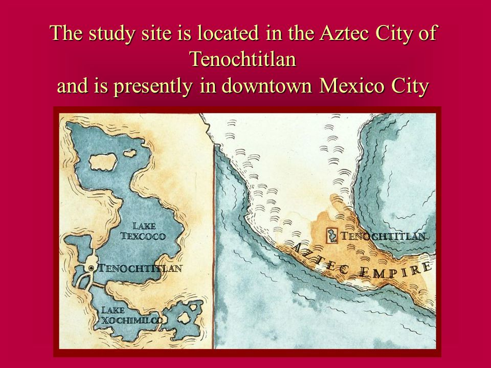 The study site is located in the Aztec City of Tenochtitlan and is presently in downtown Mexico City