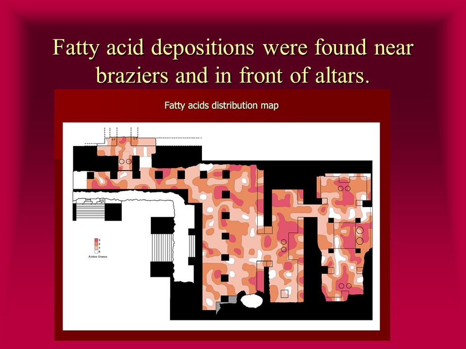 Fatty acid depositions were found near braziers and in front of altars.