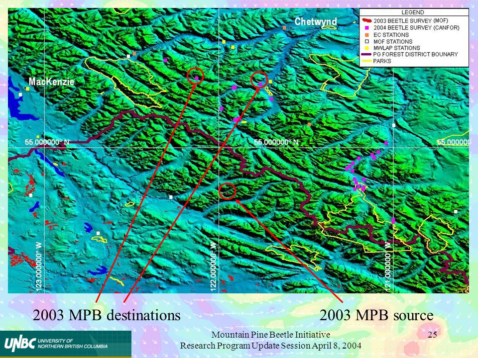 Mountain Pine Beetle Initiative Research Program Update Session April 8, 2004 25 2003 MPB destinations2003 MPB source