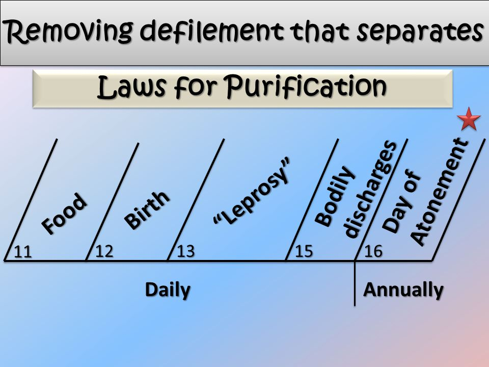 Food Leprosy Birth Bodily discharges Day of Atonement 11 12131516 DailyAnnually Laws for Purification