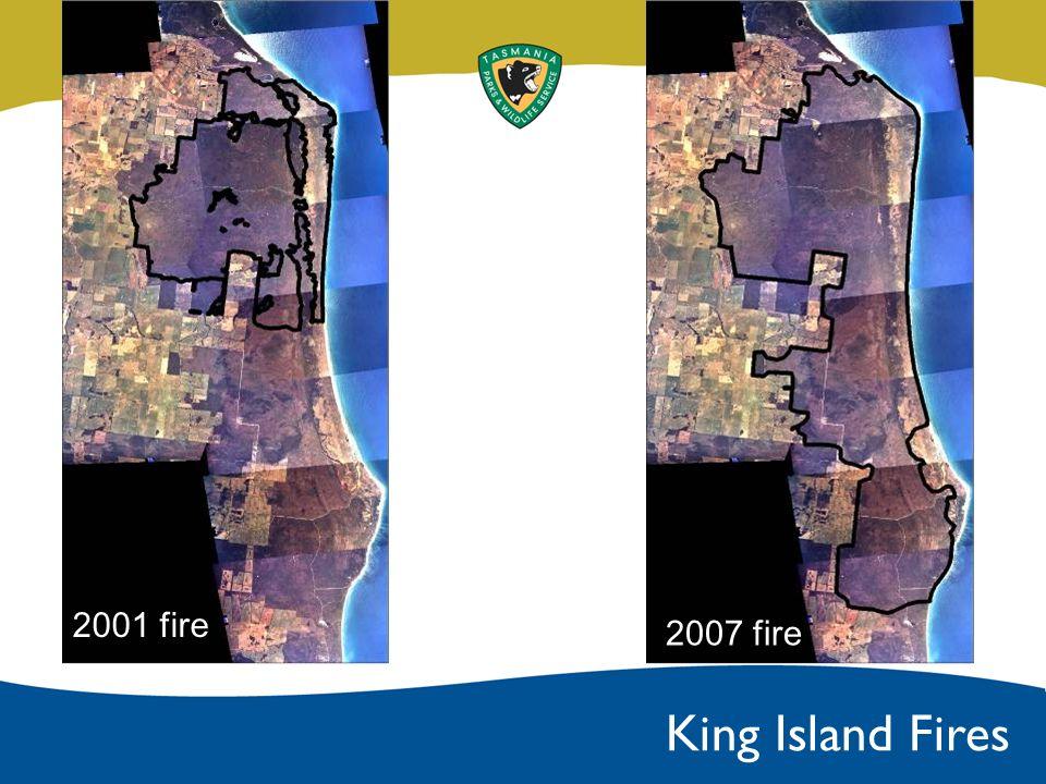 2001 fire 2007 fire