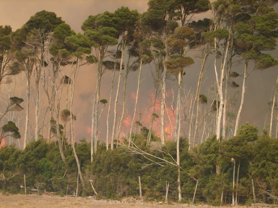 King Island Fire 2007