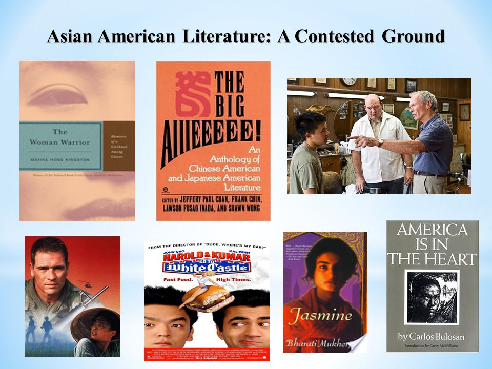 Asian American Literature: A Contested Ground