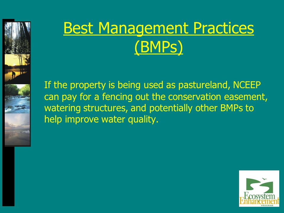 Best Management Practices (BMPs) If the property is being used as pastureland, NCEEP can pay for a fencing out the conservation easement, watering structures, and potentially other BMPs to help improve water quality.