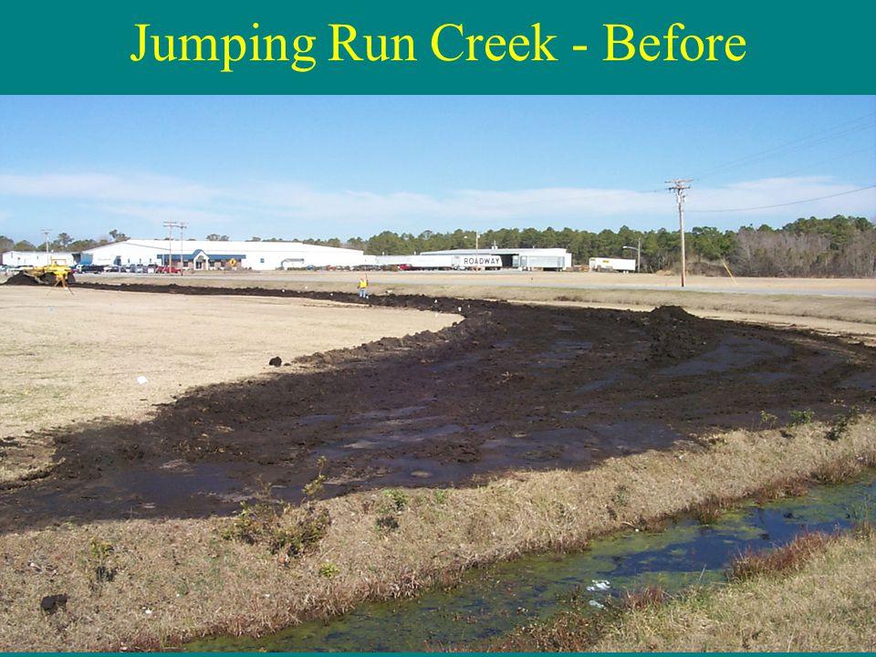 Jumping Run Creek - Before
