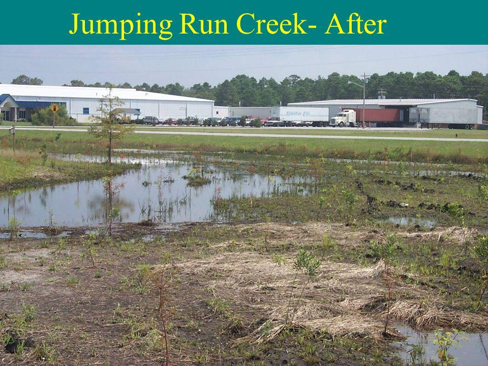 Jumping Run Creek- After