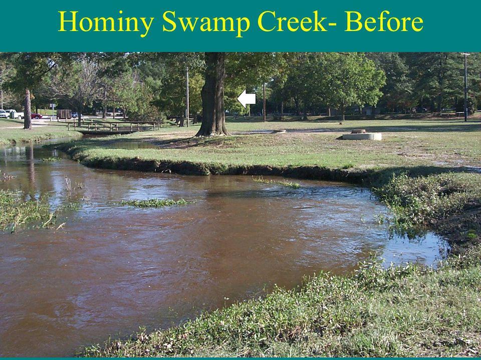 Hominy Swamp Creek- Before