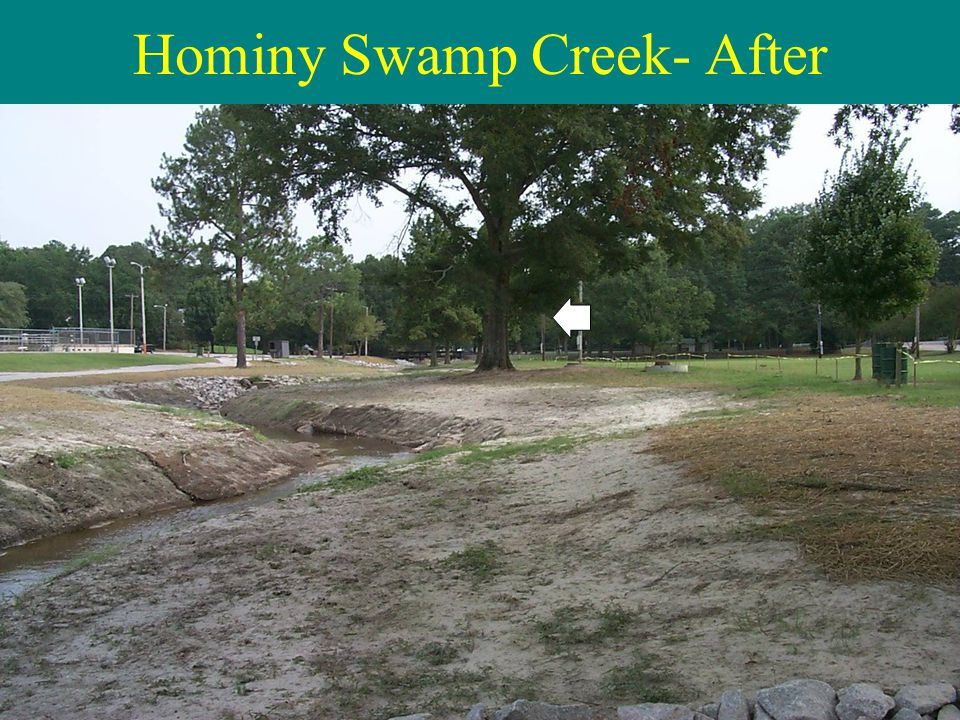 Hominy Swamp Creek- After