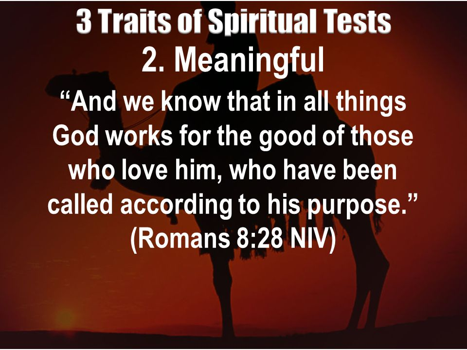 """2. Meaningful """"And we know that in all things God works for the good of those who love him, who have been called according to his purpose."""" (Romans 8:"""