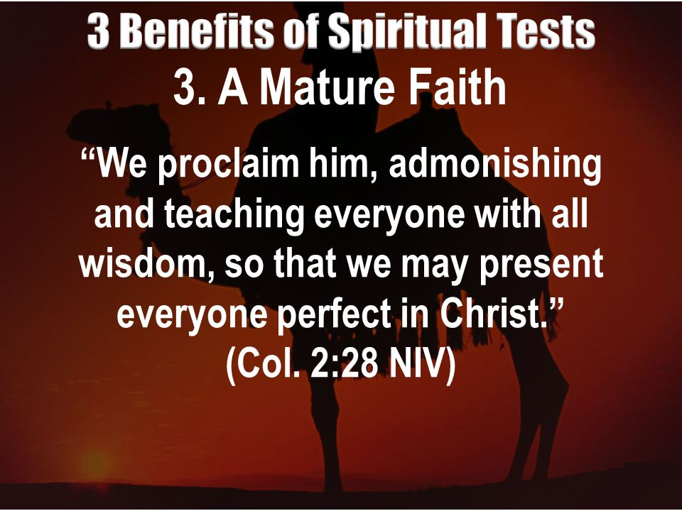 """3. A Mature Faith """"We proclaim him, admonishing and teaching everyone with all wisdom, so that we may present everyone perfect in Christ."""" (Col. 2:28"""