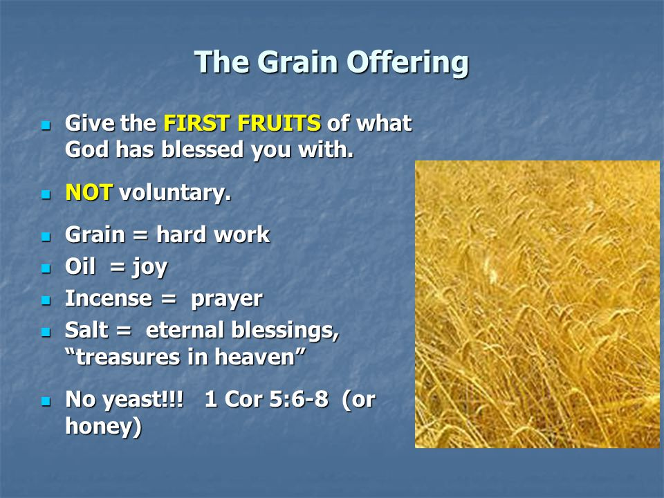 The Grain Offering Application: Our contribution to God 2 Cor 8,9 Application: Our contribution to God 2 Cor 8,9 For us, 10% is not mandatory, but giving sacrificially is.