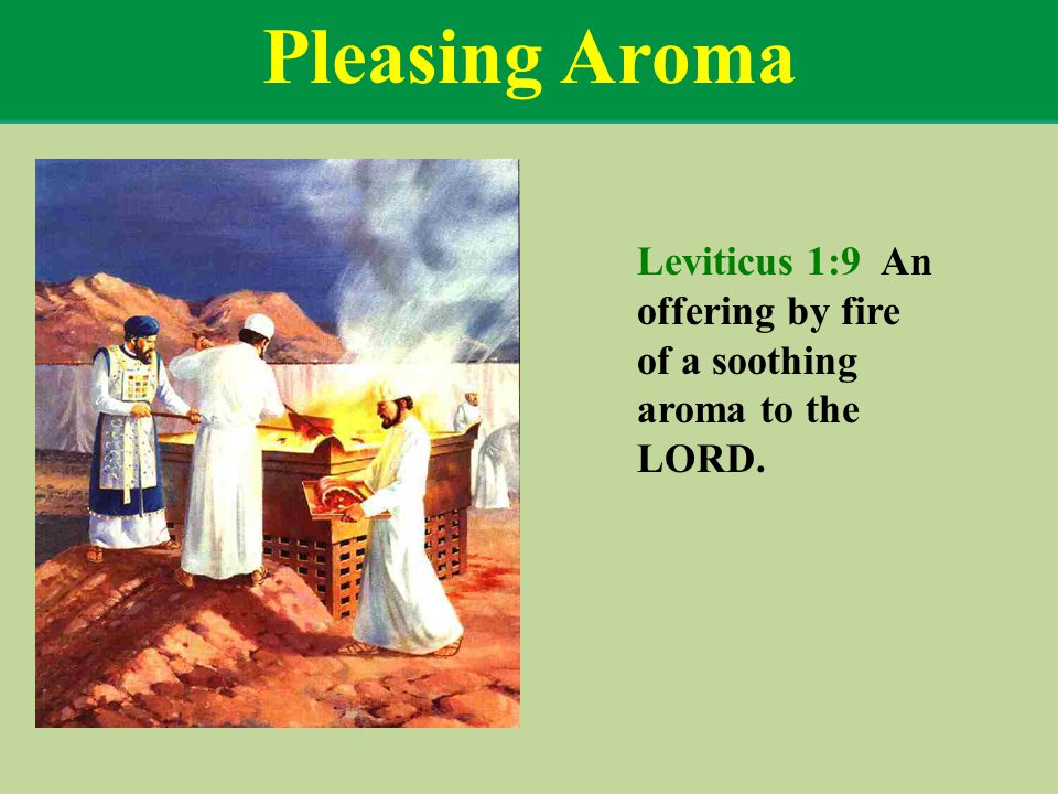 Pleasing Aroma Leviticus 1:9 An offering by fire of a soothing aroma to the LORD.