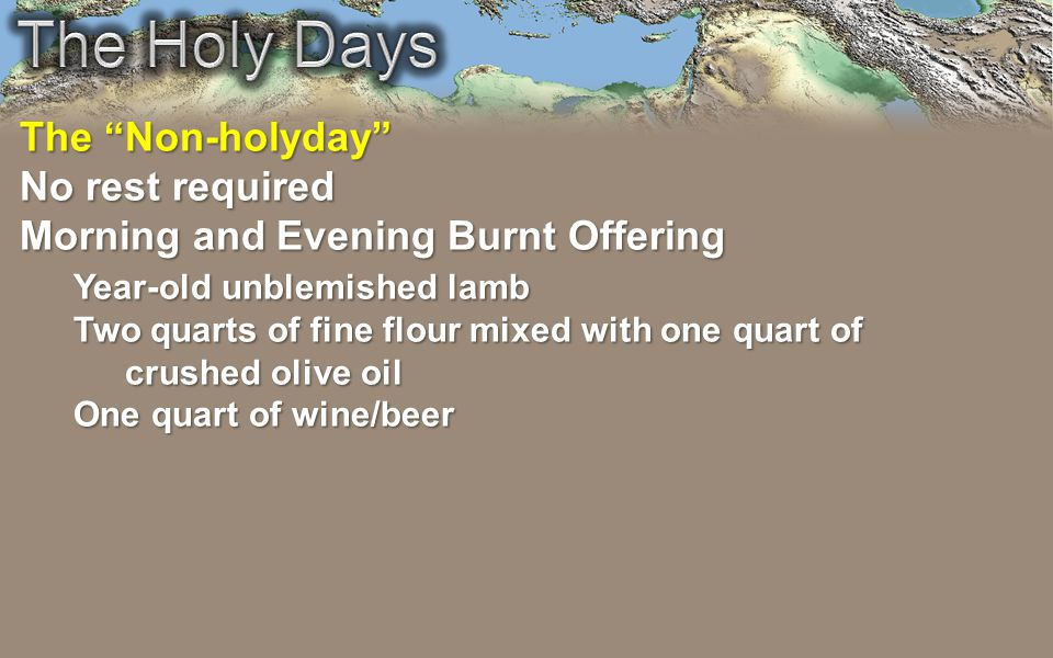 The Non-holyday No rest required Morning and Evening Burnt Offering Year-old unblemished lamb Two quarts of fine flour mixed with one quart of crushed olive oil One quart of wine/beer