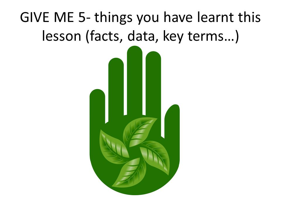 GIVE ME 5- things you have learnt this lesson (facts, data, key terms…)