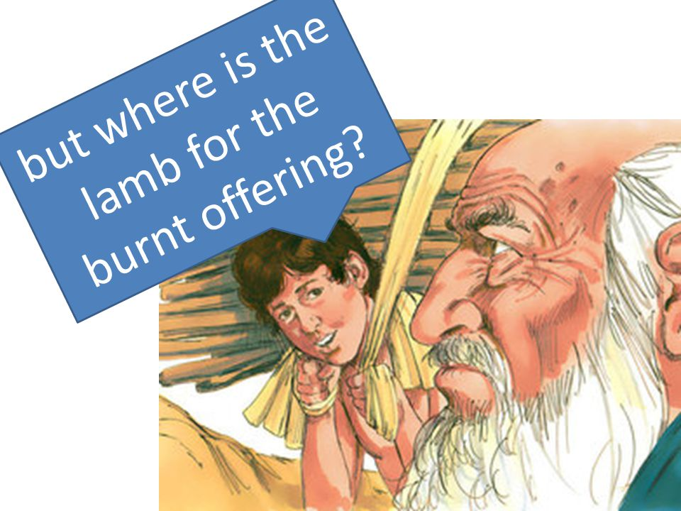but where is the lamb for the burnt offering