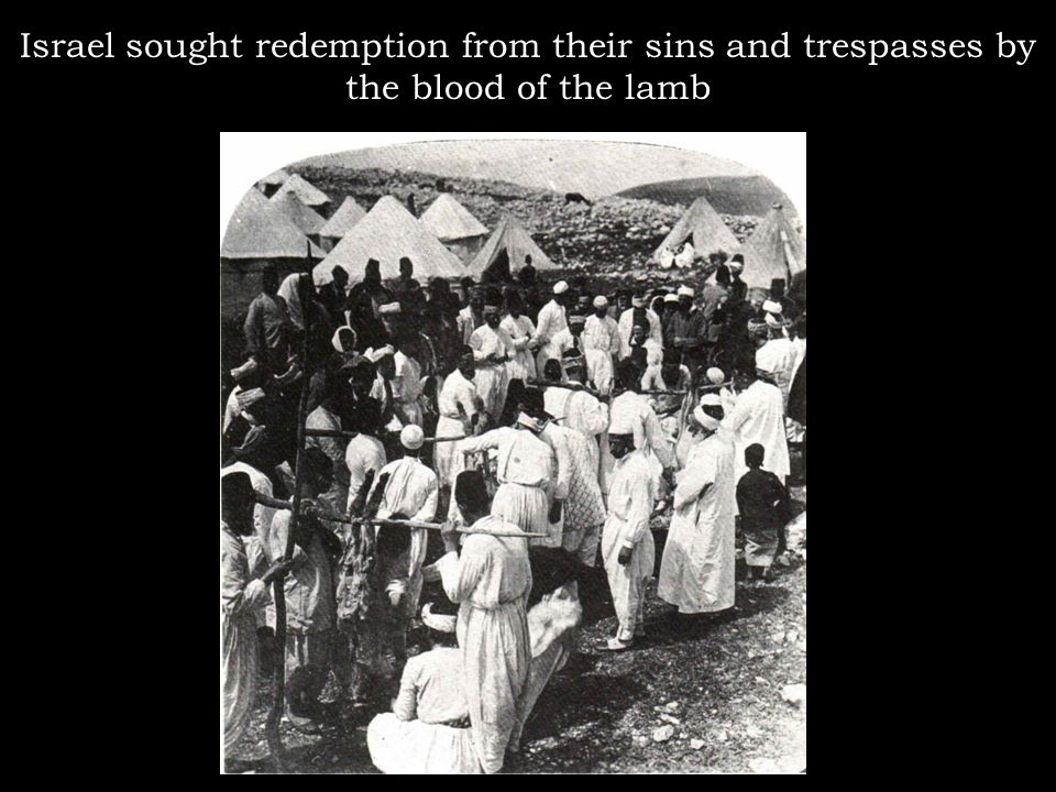 Israel sought redemption from their sins and trespasses by the blood of the lamb