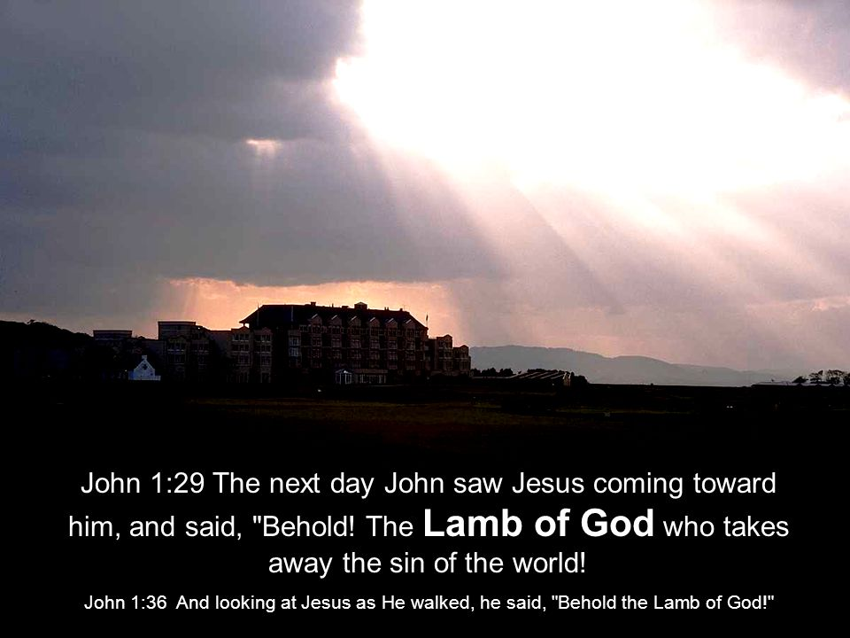 John 1:29 The next day John saw Jesus coming toward him, and said, Behold.
